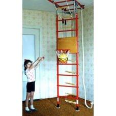 Basketball Hoop (designed for Monkey Gym)
