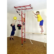 Monkey Gym Standard (with 1 protective mat)